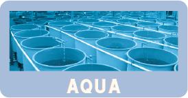 aqua-1